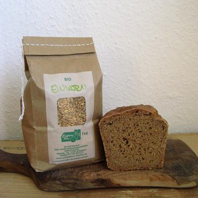 Einkorn, Brot, Getreide